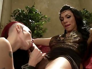 BDSM, Big Ass, Big Tits, Blowjob, Bondage, Brunette, Caucasian, Domination, Ethnic, Fetish,