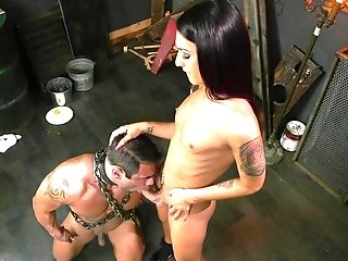 Doggystyle: 350 Videos